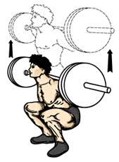 <b>squat</b> - Wiktionary