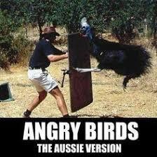 Welcome to Australia on Pinterest | Australia, Aussies and Crocodiles via Relatably.com