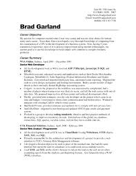 Resume Examples  Career Objective for a Resume  career objectives     Rufoot Resumes  Esay  and Templates     Resume Examples  Career Objective For A Resume With Career Summary As Senior Web Developer In