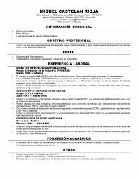 new cv format resume writing resume examples new cv format 2012 cv template your life your career your latest