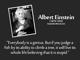Stupid Quotes | Inspiration Boost via Relatably.com