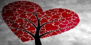 Αποτέλεσμα εικόνας για φωτο εικονες αιμοδοσιας