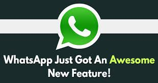 Image result for whatsapp pin to top