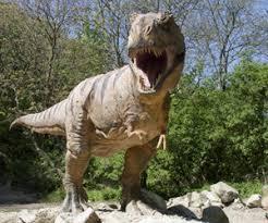 Resultado de imagen de dinosaurio fotos y nombres