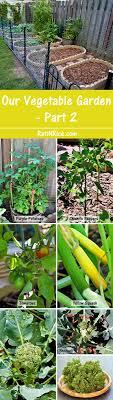kitchen garden part