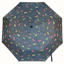 <b>Ferre зонт</b>- купить оригинальные <b>зонты Ферре</b>, Италия в ...