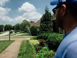 How to build a <b>simple</b>, smarter lawn <b>sprinkler system</b> for less - CNET