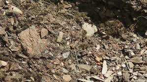Image result for pictures of  ash-heaps
