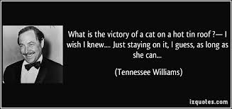 what is the victory of a cat on a hot tin roof  — i wish i knew    what is the victory of a cat on a hot tin roof  — i wish