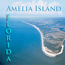 Image result for amelia island