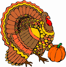 Image result for turkey pictures thanksgiving