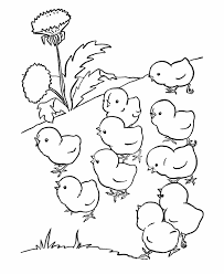 Small Picture Farm animal chicken coloring page baby chicks out for a walk