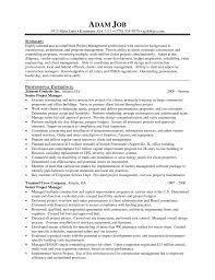denver management resume   sales   management   lewesmrsample resume  project management resumes for senior manager