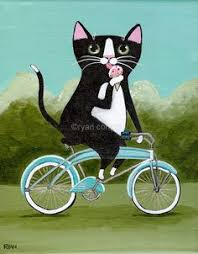 Image result for Animals on a bicycle