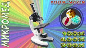Детский <b>микроскоп</b> - <b>Микромед 100x-900x в</b> кейсе - YouTube