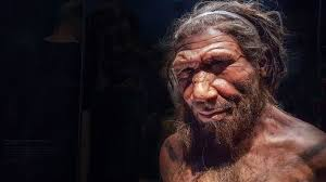 Here's what we know <b>sex</b> with Neanderthals was like - BBC Future