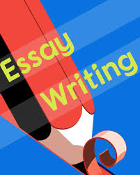 essay writer Course Overview  The Essay Writing