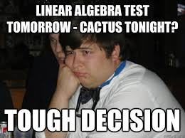 linear algebra test tomorrow - cactus tonight? tough decision ... via Relatably.com