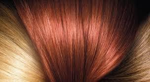 <b>Permanent Hair Color</b> & Hair Dye Products - L'Oréal Paris