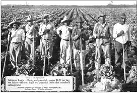 """Inventing the """"<b>Magic</b> Valley"""" of South Texas, 1905-1941"""
