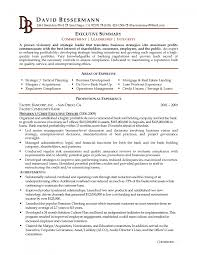 cover letter resume example summary resume summary example cover letter cover letter template for resume career overview example executive summary project management sample telecom