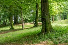 Fête du Parc Naturel Régional des Ardennes Nouzonville  dimanche 27 septembre 2020 - Unidivers