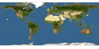 Scapania ornithopodioides - Jungermannia planifolia -- Discover ...