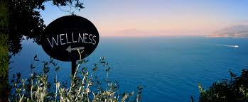 Image result for wellness