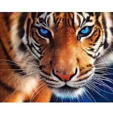 "100% Full 5D Diy Daimond Painting ""Colorful <b>Tiger</b>"" <b>3D</b> Diamond ..."