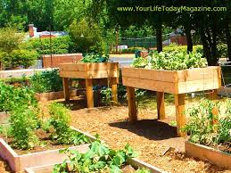Small Picture Growing Vegetables In Boxes A Formal Vegetable Garden Dirt Simple