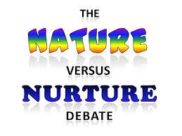 nature vs nurture examples essay writing   essay for you    nature vs nurture examples essay writing   image