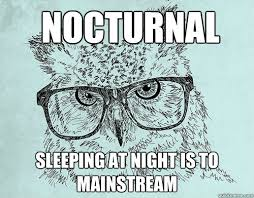 nocturnal Sleeping at night is to Mainstream - Hipster owl - quickmeme via Relatably.com
