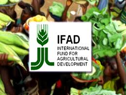 Image result for IFAD