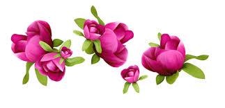 Image result for clip art flowers