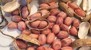 Heirloom African <b>Peanut</b>, Once Nearly Extinct, Returns : The Salt ...
