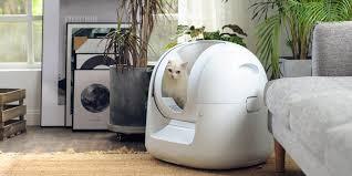 Штука дня: <b>умный</b> кошачий туалет, который возьмёт на себя ...