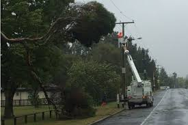 Image result for cyclone pam nz powerlines