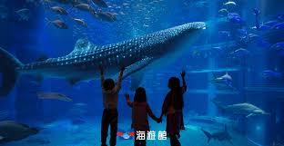 <b>Feeding Times</b> for Marine Animals | Osaka Aquarium KAIYUKAN