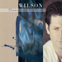 <b>Wilson</b>, <b>Brian</b> : <b>Brian Wilson</b> (<b>extended</b> version) -blue swirl vinyl ...