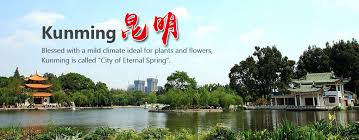 Image result for kunming