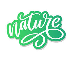 <b>100</b> natural green lettering sticker with brushpen <b>calligraphy</b>. eco ...