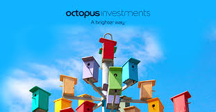 <b>Octopus</b> Investments: UK Investments