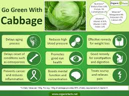 amazing benefits of cabbage organic facts blood pressure