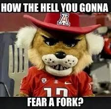 funny sports on Pinterest | New York Giants, Arizona Wildcats and ... via Relatably.com