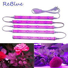 ReBlue Official Store - Amazing prodcuts with exclusive discounts ...