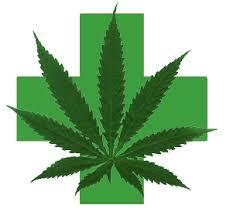 Résultats de recherche d'images pour «cannabis»