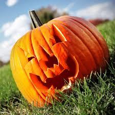 Food Facts About <b>Pumpkin</b> and <b>Pumpkin</b> Seeds | <b>Shape</b>