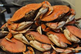 Image result for crabs