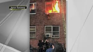 WATCH: Smoky <b>Cat</b> Leaps From Burning NYC Apartment – NBC ...