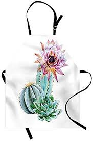 Ambesonne Cactus <b>Apron</b>, Cactus Spikes Flower in <b>Hot</b> Mexican ...